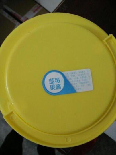 盾皇果酱 奶茶店冲饮原料 果肉果汁甜品店3kg 柳橙酱 晒单图