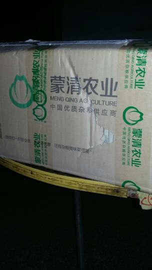 蒙清黄米面内蒙古原产杂粮黄米粉糕点面五谷杂粮农家粘小米石磨面粉黍子面2.5kg*3连包 晒单图