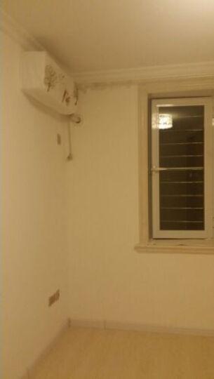 壁纸胶墙纸胶 环保墙纸辅料套装 糯米胶水 基膜胶水 2KG/袋-糯米胶 晒单图
