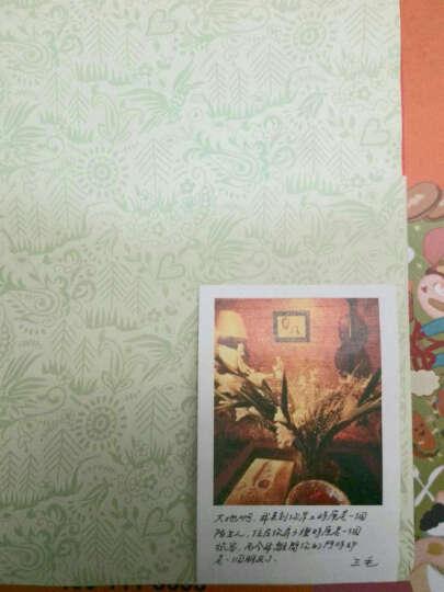 正版 你是我不及的梦 三毛 全新散文精装 26篇散佚作品 畅销书籍 晒单图