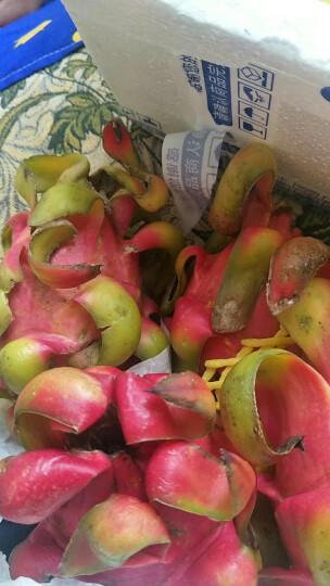 越南进口红心火龙果 6个装 单果300-450g 水果 晒单图