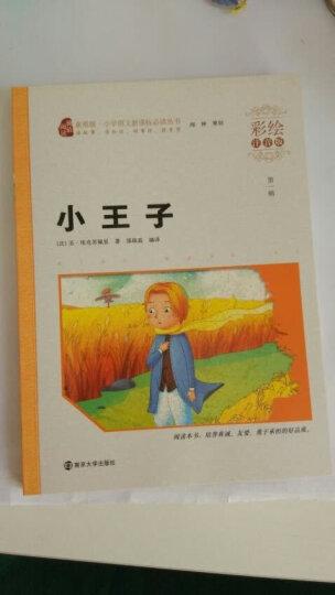 小王子(彩绘注音版)/小学语文新课标必读丛书,智慧熊图书 晒单图