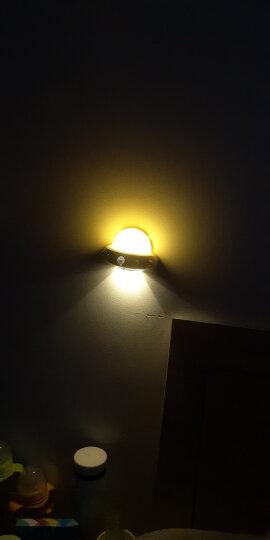 小夜灯卧室氛围睡眠遥控灯婴儿喂奶灯插座灯可充电插电夜光灯儿童床头睡觉起夜台灯哺乳情趣母婴夜间哺乳灯 蓝色-充电遥控款 晒单图