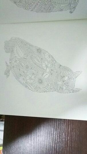 瓦伦汀娜的曼陀罗幻境:幻若心之花,独创花形能量圈的忘忧涂色书 晒单图