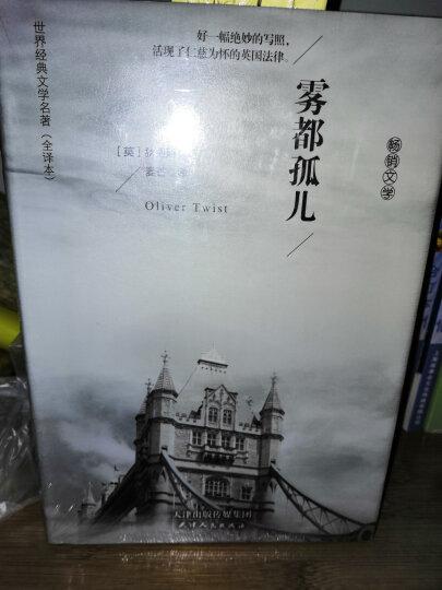 双语译林:契诃夫中短篇小说选(附英文原版1本) 晒单图