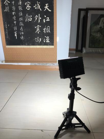 摄影怪兵器 LED摄影灯暖光灯小型静物摄影棚拍照柔光灯补光灯射灯拍摄道具 中号桌灯一只 晒单图
