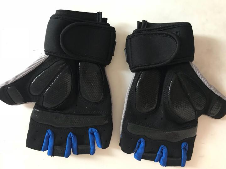 LAC 健身手套男士运动手套 女健身房哑铃器械训练半指护腕透气防滑骑行手套 蓝色XL 晒单图