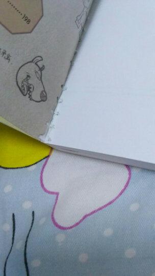 查理九世 单本15元任选 1-27册 雷欧幻像著儿童书籍少儿惊险故事图书第二季11-14岁 15海龟岛的狩猎者 晒单图