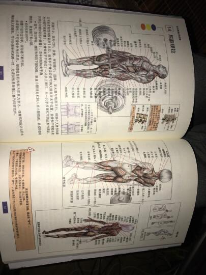 肌肉健美训练图解(最新版)  晒单图
