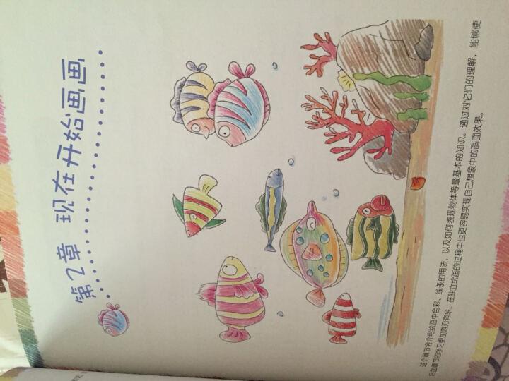 飞乐鸟的手绘时光:色铅笔手绘基础入门 晒单图