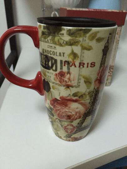 爱屋格林 手绘陶瓷马克杯 情侣艺术咖啡杯 带盖杯子 水杯 500ML 礼盒装紫色鸢尾 3LTM5128L 晒单图