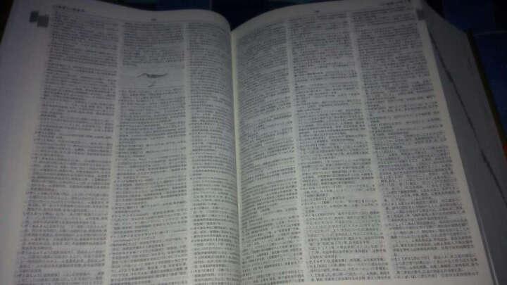 新世纪日汉双解大辞典 晒单图