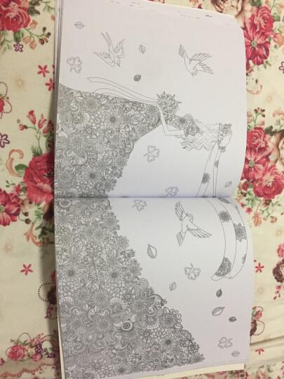 神秘花园 4册 正版 填色书 手绘 涂色书 成人 创意涂鸦填色 秘密花园涂色书 彩铅书  晒单图