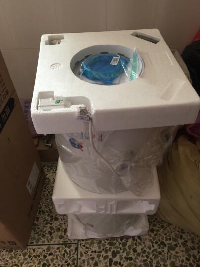 樱花(SAKURA) 储水式电热水器家用洗澡淋浴机50升/60升/80升 欧姆盾5重防漏电 60升-88E60F 晒单图