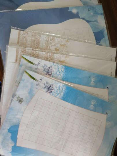 苏墨坊硬笔书法纸田字格钢笔练习作品创作纸学生卡通比赛用纸信笺A4套装T1 货号143 晒单图