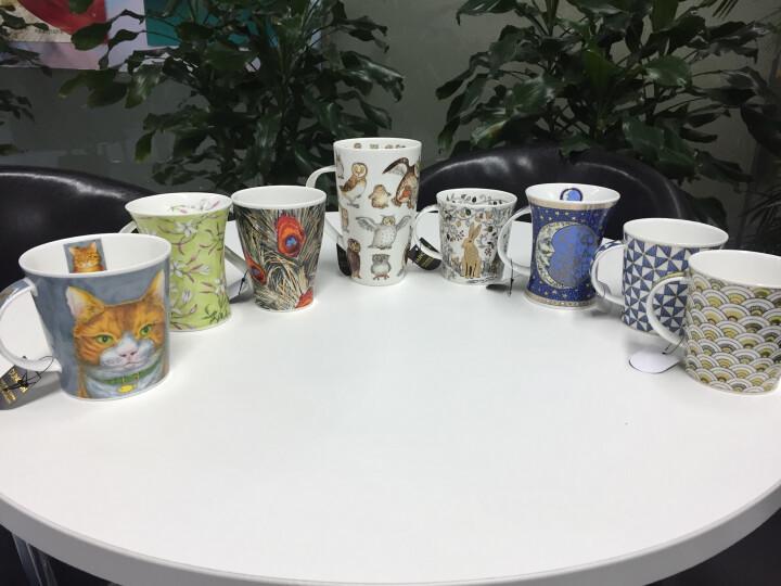 丹侬(dunoon) 英国进口杯子 咖啡杯马克杯陶瓷杯情侣杯杯子创意骨瓷杯 喵星人 喵星人-斑猫 晒单图