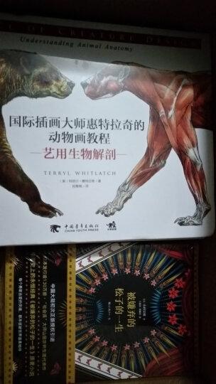 虎豹小霸王 晒单图