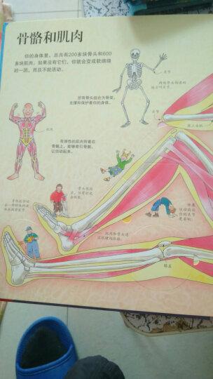 看里面第四辑·第四册辑:揭秘身体 晒单图