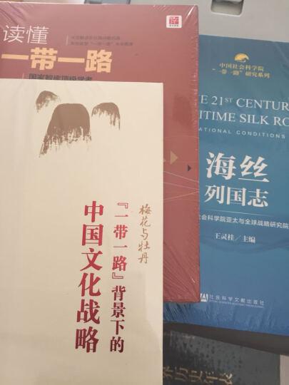 """梅花与牡丹 """"一带一路""""背景下的中国文化战略 中信出版社 晒单图"""