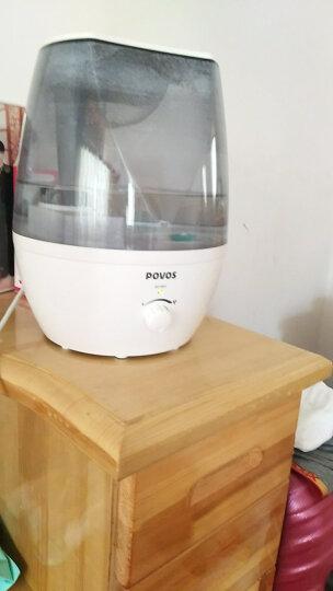 奔腾(POVOS) PW113空气加湿器家用大容量空调办公室卧室加湿器静音净化大雾量 标配 晒单图