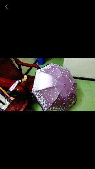 天堂伞防紫外线女太阳伞防晒遮阳伞折叠晴雨伞晴雨两用三折伞时尚女士配饰 果绿 晒单图