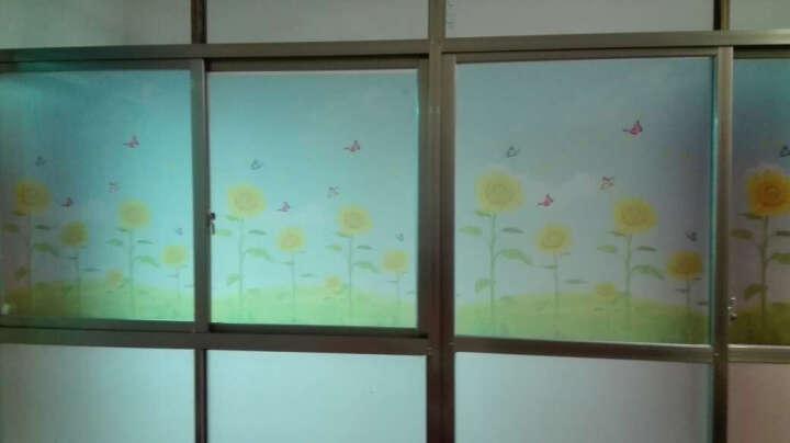 蓝瑞田园磨砂玻璃贴膜纸 卫生间浴室玻璃门推拉移门彩装膜阳台窗户贴纸窗花纸 向日葵 静电膜-58CM宽*60CM高 晒单图