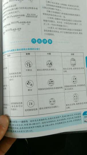 高中数理化生知识大全(第3次修订) 晒单图