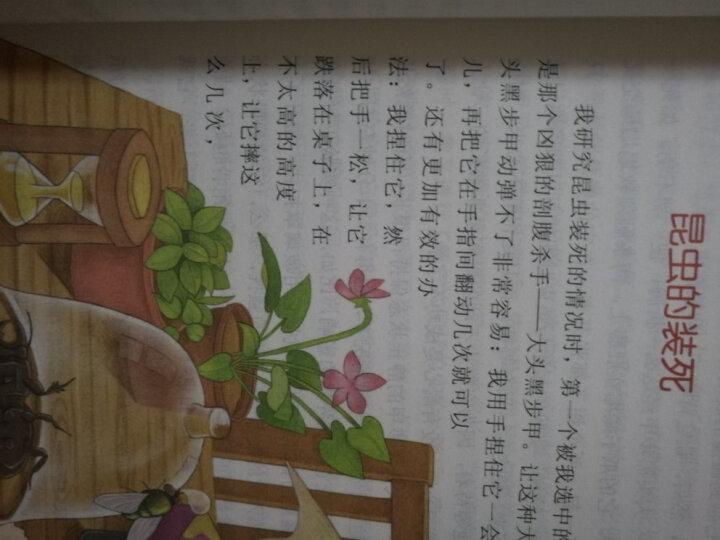 语文同步阅读精华版(同步阅读+课文作家作品系列 适用五、六年级 套装共8册) 晒单图