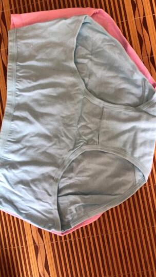 【闪购】南极人女士内裤纯棉可爱纯色性感三角裤7条礼盒装TX 时尚女王款 M (160/80) 晒单图