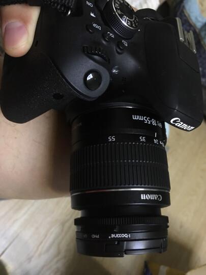 佳能(Canon)镜头单反相机小痰盂/标准定焦镜头/ 人像镜头/变焦镜头 EF 100mm f/2.8L IS USM 官方标配 晒单图