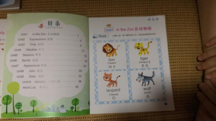 幼儿英语启蒙绘本书全4册 英语单词字母零基础入门 幼儿英语启蒙 3-6岁儿童英语教材辅导分级阅读英语 晒单图