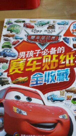 男孩子必备的赛车贴纸全收藏:赛车总动员 晒单图