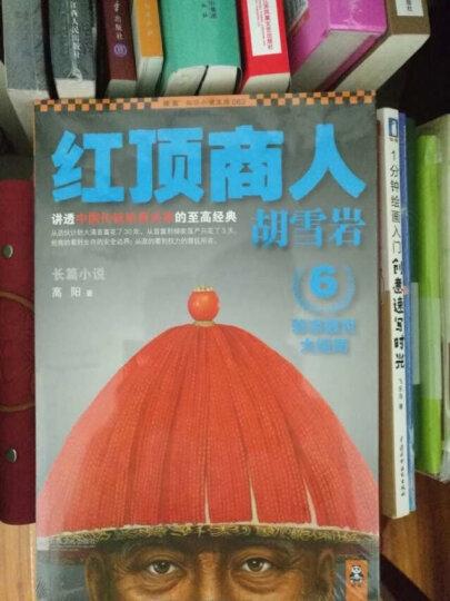 红顶商人胡雪岩6:悲凉醒世大结局 晒单图