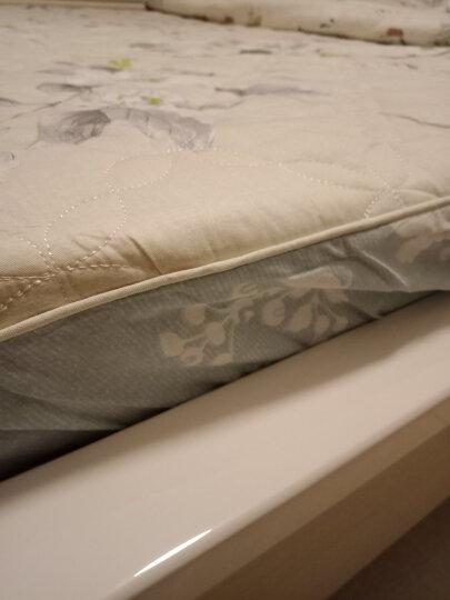 馨窝家纺 床笠纯棉 全棉床罩床单床笠单件 夹棉床笠套 床垫保护套加厚床笠 可配四件套 摩登时光 (三件套)2.0*2.2米床笠+夹棉枕套 晒单图