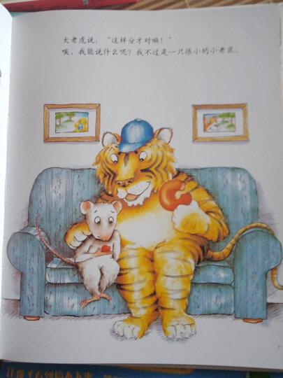 小树苗译丛:小老鼠和大老虎(精装) 晒单图