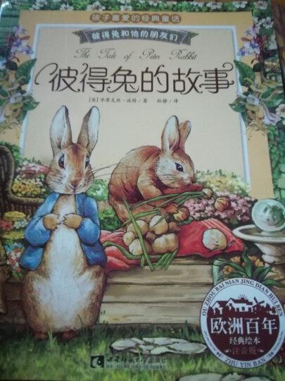彼得兔的故事绘本全8册彩图注音版绘本3-6岁儿童图书睡前故事亲子读物比得兔的故事 幼儿园大中小班读物 晒单图