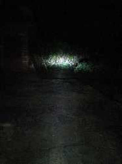 美蒂亚 石栏电动车灯摩托车灯高亮9-85V双爪三爪单爪通用内置远近光LED大灯泡 三爪10W+10W各亮一面 晒单图