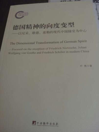 德国精神的向度变型:以尼采、歌德、席勒的现代中国接受为中心 晒单图