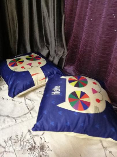 凯舒 卡通抱枕靠垫枕办公室午睡枕靠垫坐车用腰枕 可爱猫咪 40cm*40cm 晒单图