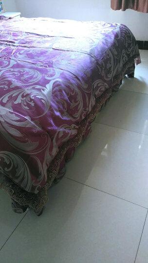 摩天轮家纺 水晶绒四件套加厚法兰绒6D雕花绒 珊瑚绒被套冬季套件保暖床上用品 火鸟  紫 被套220*240cm适用于1.8米/2米床 晒单图