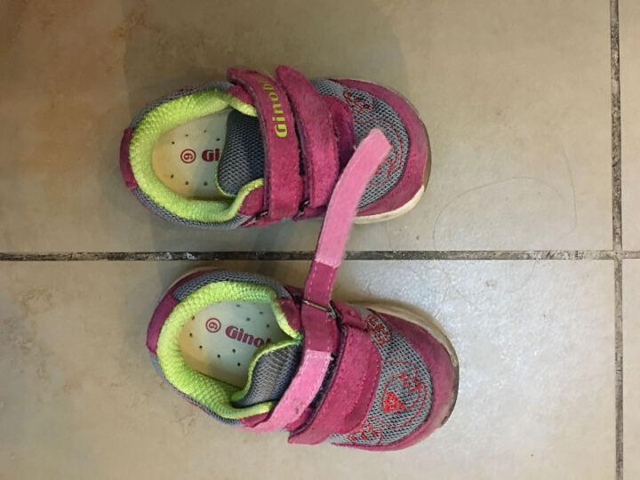 基诺浦机能鞋秋冬款 宝宝学步鞋 男童女童儿童运动鞋真皮透气小童鞋TXG825 TXG825桃红/灰色 美码6#/内长14.3cm 晒单图
