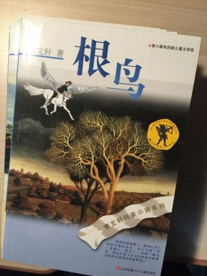 曹文轩经典长篇小说礼盒(套装共7册) 晒单图