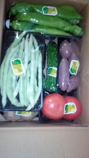 恒绿 苦瓜 约300g 新鲜蔬菜 火锅涮锅凉调食材配菜 晒单图