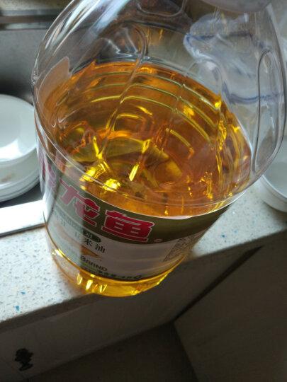 金龙鱼 食用油 非转基因 压榨 一级 纯正玉米油4L 晒单图
