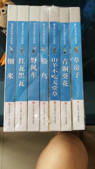 曹文轩纯美小说系列:蜻蜓眼 晒单图