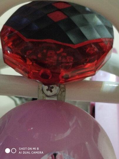 蓝火(lanfire) 蓝火自行车灯前灯高亮度骑行装备单车配件车前灯尾灯充电式强光手电筒 【电池款套装】红色买一送十 晒单图