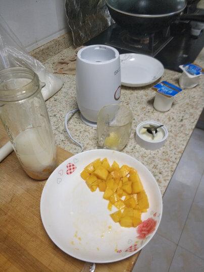 SKG 便携式榨汁机家用 多功能奶昔水果汁机 迷你电动榨汁杯 辅食料理机婴儿一机双杯 2508 珍珠白 晒单图