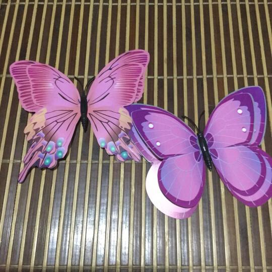 喜艾林 12只双层套装3d立体墙贴套装仿真昆虫磁性冰箱贴窗帘家装装饰品别针蝴蝶贴纸 12只粉色双层别针款 晒单图