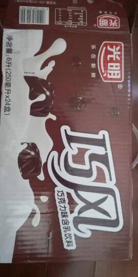 光明 巧风巧克力味含乳饮料250ml*24盒中华老字号 晒单图