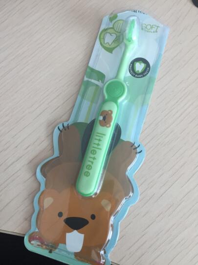 英国小树苗 婴幼儿童宝宝绿色训练牙刷 软毛不伤牙龈 适合1-3岁 晒单图